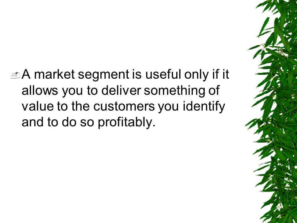  A market segment is useful only if it allows you to deliver something of value to the customers you identify and to do so profitably.