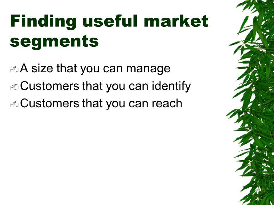 Finding useful market segments  A size that you can manage  Customers that you can identify  Customers that you can reach