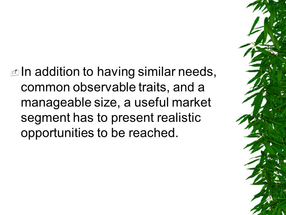  In addition to having similar needs, common observable traits, and a manageable size, a useful market segment has to present realistic opportunities
