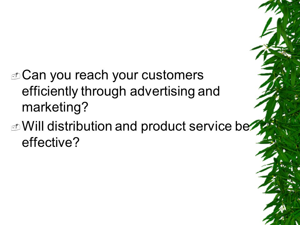  Can you reach your customers efficiently through advertising and marketing?  Will distribution and product service be effective?
