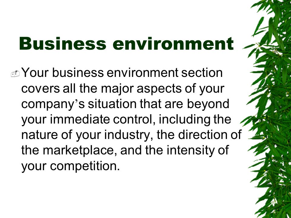 Business environment  Your business environment section covers all the major aspects of your company ' s situation that are beyond your immediate con