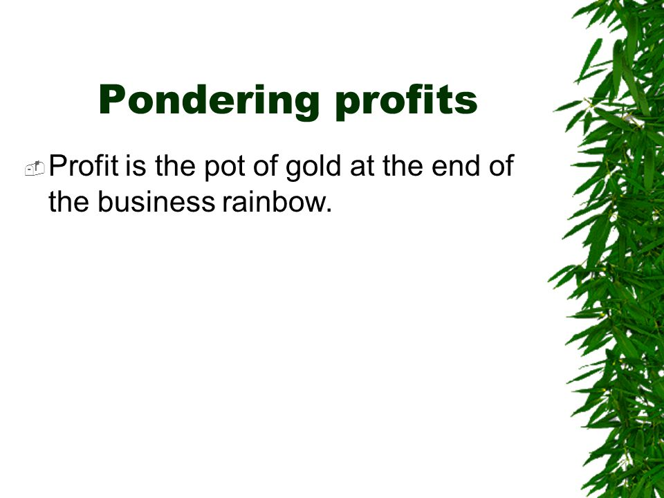 Pondering profits  Profit is the pot of gold at the end of the business rainbow.