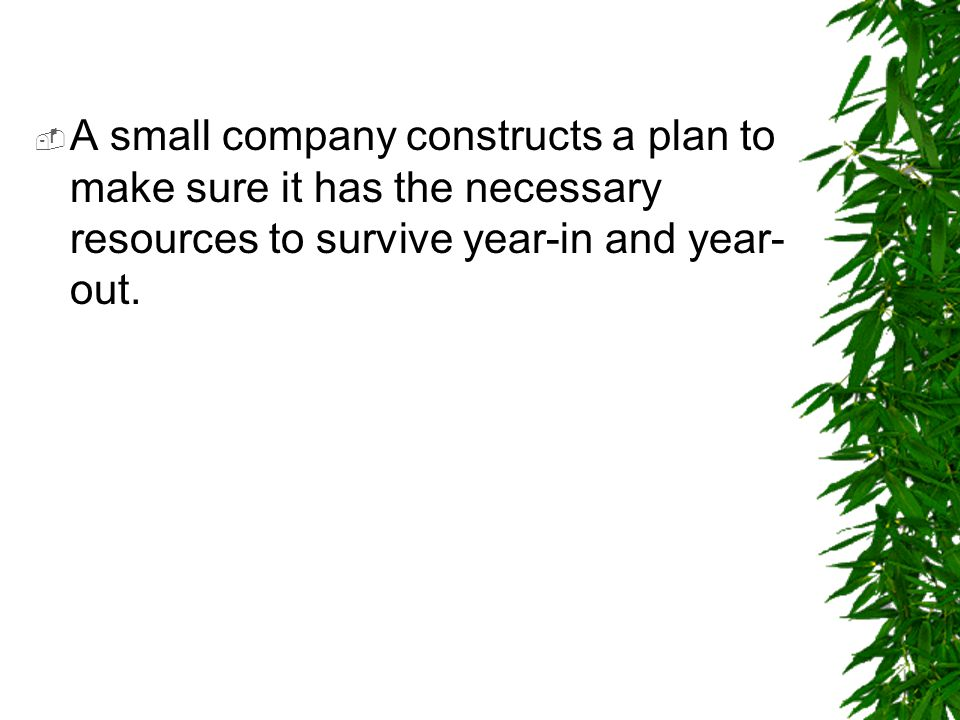  A small company constructs a plan to make sure it has the necessary resources to survive year-in and year- out.