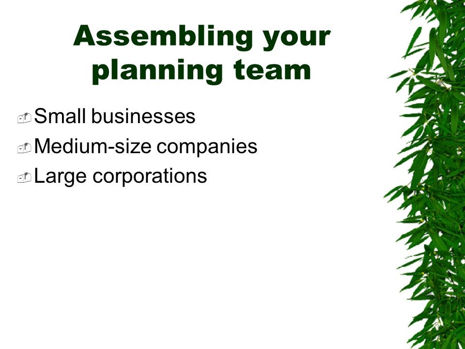 Assembling your planning team  Small businesses  Medium-size companies  Large corporations
