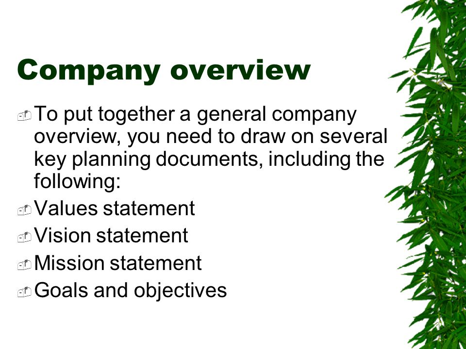 Company overview  To put together a general company overview, you need to draw on several key planning documents, including the following:  Values s