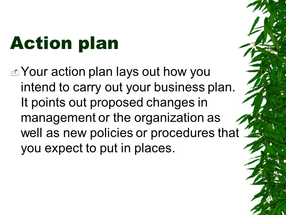 Action plan  Your action plan lays out how you intend to carry out your business plan. It points out proposed changes in management or the organizati