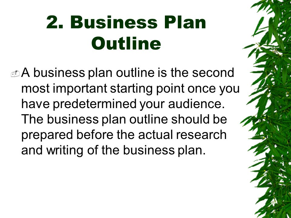 2. Business Plan Outline  A business plan outline is the second most important starting point once you have predetermined your audience. The business