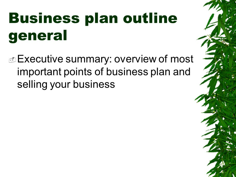 Business plan outline general  Executive summary: overview of most important points of business plan and selling your business