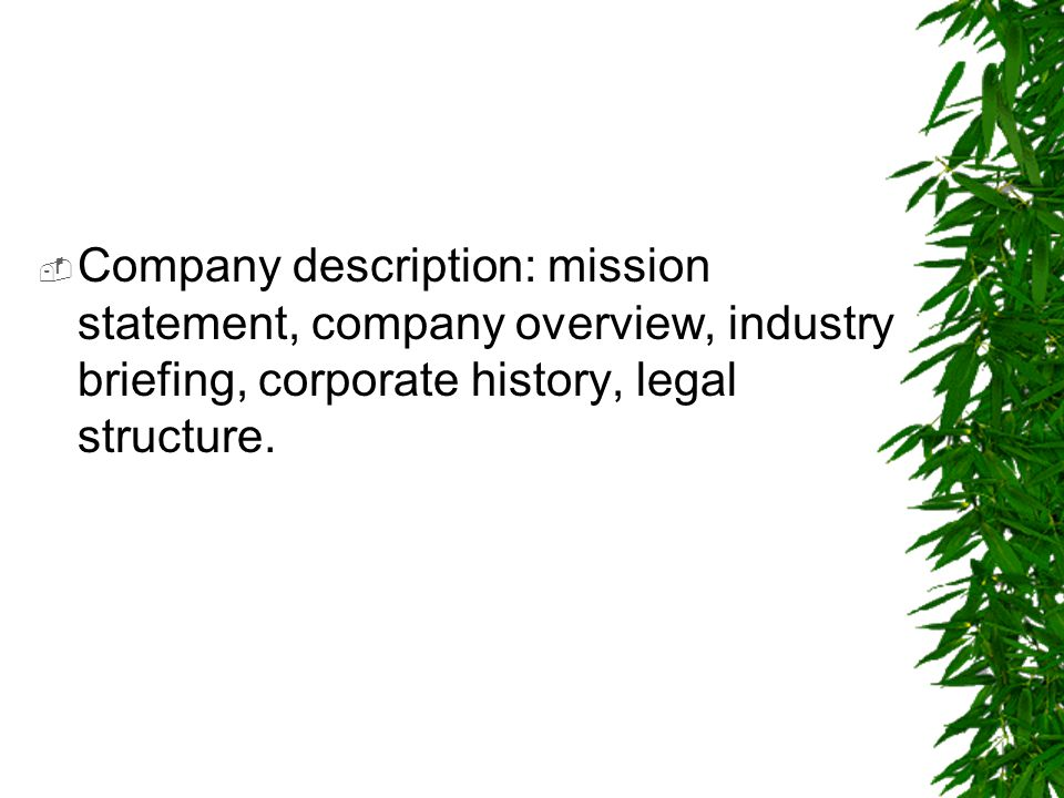  Company description: mission statement, company overview, industry briefing, corporate history, legal structure.