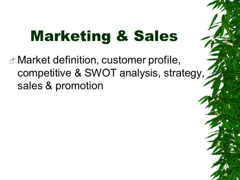 Marketing & Sales  Market definition, customer profile, competitive & SWOT analysis, strategy, sales & promotion