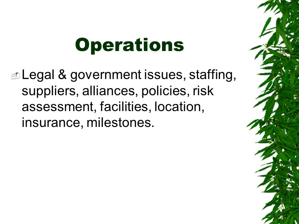 Operations  Legal & government issues, staffing, suppliers, alliances, policies, risk assessment, facilities, location, insurance, milestones.