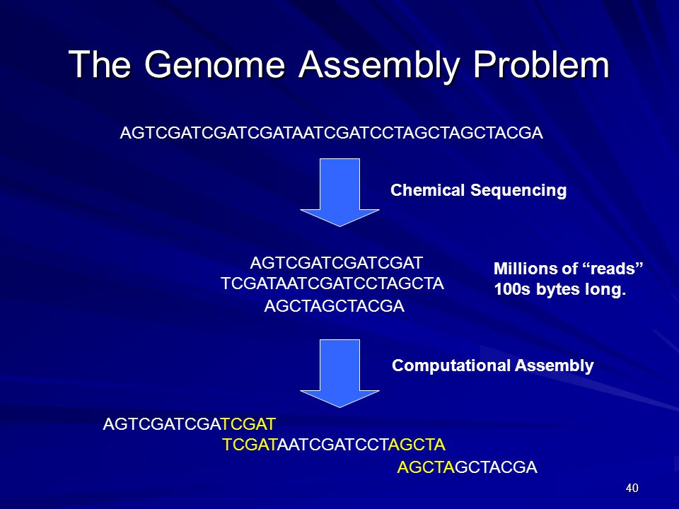 40 The Genome Assembly Problem AGTCGATCGATCGATAATCGATCCTAGCTAGCTACGA AGTCGATCGATCGAT AGCTAGCTACGA TCGATAATCGATCCTAGCTA Chemical Sequencing Computational Assembly AGTCGATCGATCGAT AGCTAGCTACGA TCGATAATCGATCCTAGCTA Millions of reads 100s bytes long.