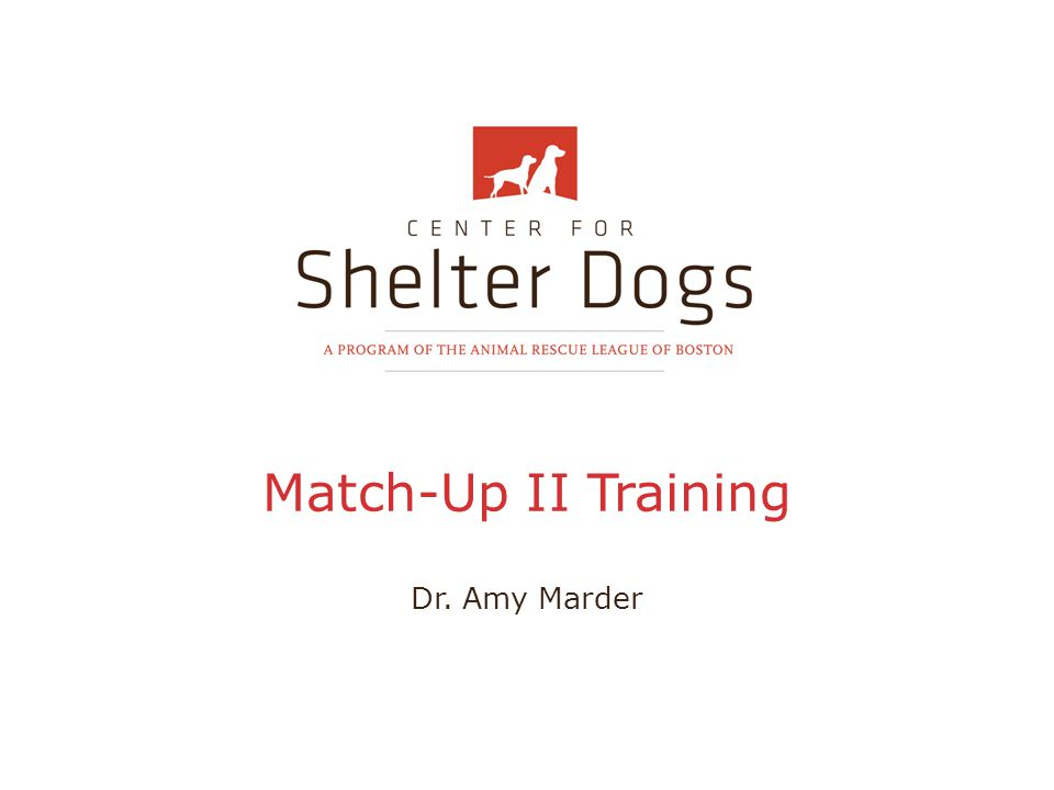 Introduction to CSD A program of the Animal Rescue League of Boston Dedicated to improving the welfare of homeless dogs cared for by humane organizations, animal control facilities, and rescue groups throughout the nation Science-based research and outcome assessment are the cornerstones of our efforts
