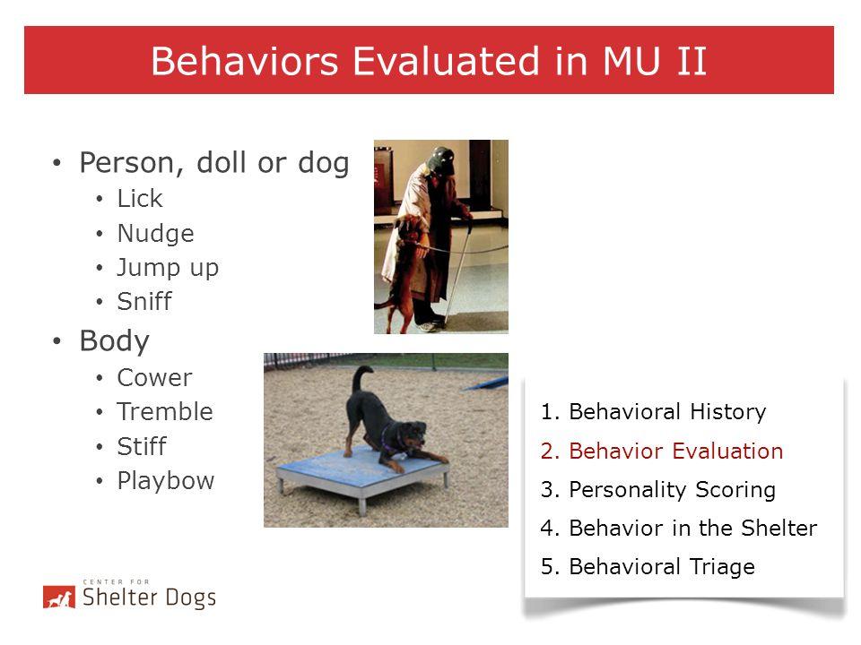Behaviors Evaluated in MU II 1. Behavioral History 2. Behavior Evaluation 3. Personality Scoring 4. Behavior in the Shelter 5. Behavioral Triage Perso
