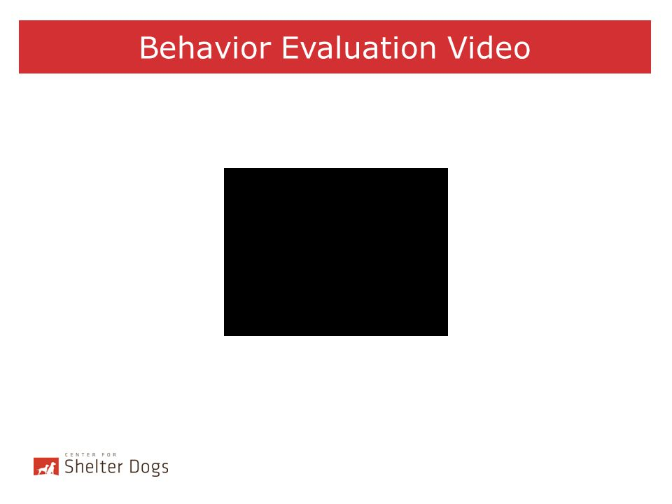 Behavior Evaluation Video