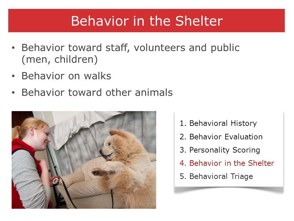 Behavior in the Shelter 1. Behavioral History 2. Behavior Evaluation 3. Personality Scoring 4. Behavior in the Shelter 5. Behavioral Triage Behavior t