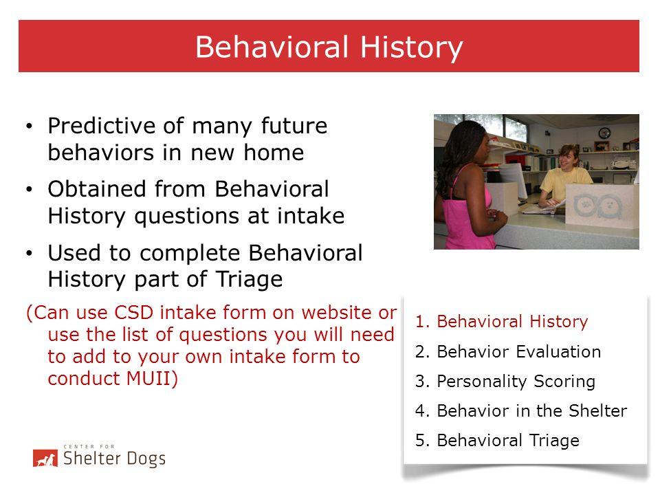 Behavior Evaluation 1.Behavioral History 2. Behavior Evaluation 3.