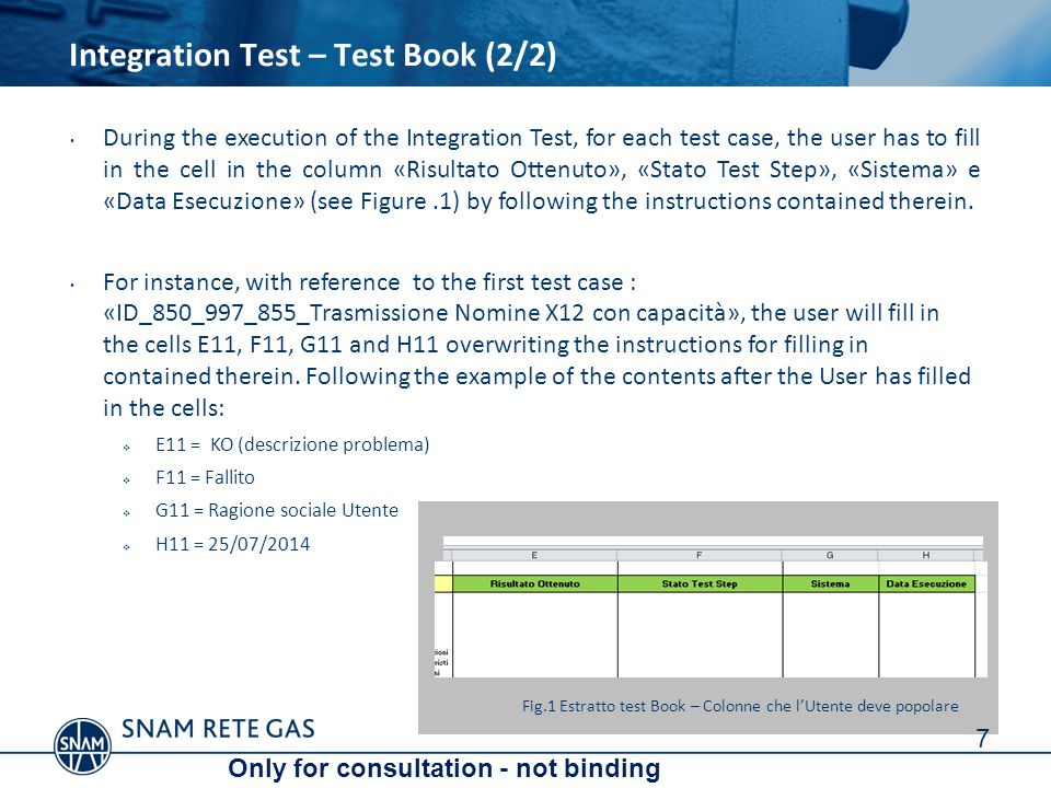 8 Please look over this document and the content integrated in the technical specifications recently published (including Test Book.xls embedded) and necessary to startup phase of Integration Test scheduled for July 21th.