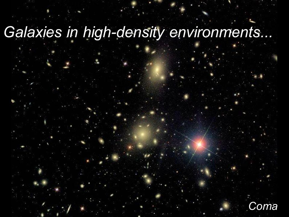 Galaxies in high-density environments... Coma cluster