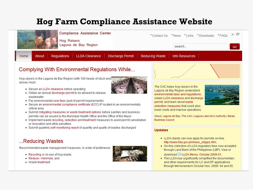 Web Content Updating: Joint Function of the LLDA and CAC Host Organizations  Most of the regulatory information from LLDA and other agencies will commonly apply to both hog raisers and slaughterhouse operators.