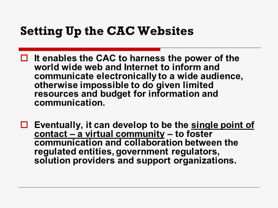 Setting Up the CAC Websites – Planning Process  Deciding on the contents of the website Gathering and analyzing information on the industry sector Discussion with industry sector on their problems and difficulties in complying with environmental regulations  Getting a web designer and deciding on the design and make-up of the website Design should reflect the industry sector being served by the CAC