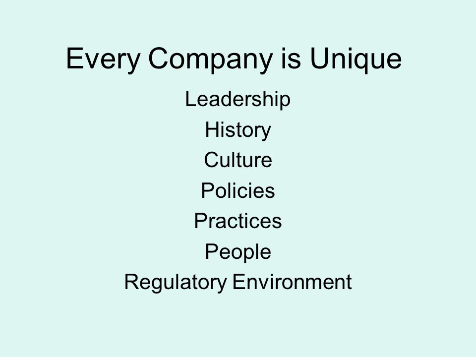 Every Company is Unique Leadership History Culture Policies Practices People Regulatory Environment