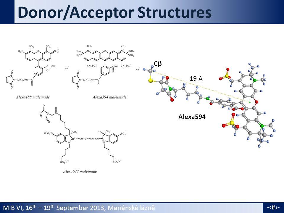 MIB VI, 16 th – 19 th September 2013, Mariánské lázně -16- Donor/Acceptor Structures Alexa594 CC 19 Å