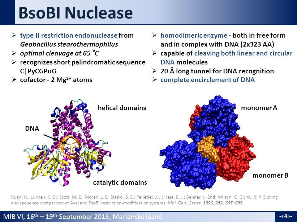 MIB VI, 16 th – 19 th September 2013, Mariánské lázně -3- Experimental study Dikić, J.