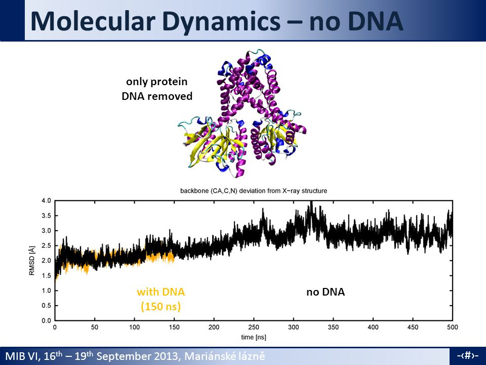 MIB VI, 16 th – 19 th September 2013, Mariánské lázně -6- Molecular Dynamics – no DNA only protein DNA removed with DNA (150 ns) no DNA