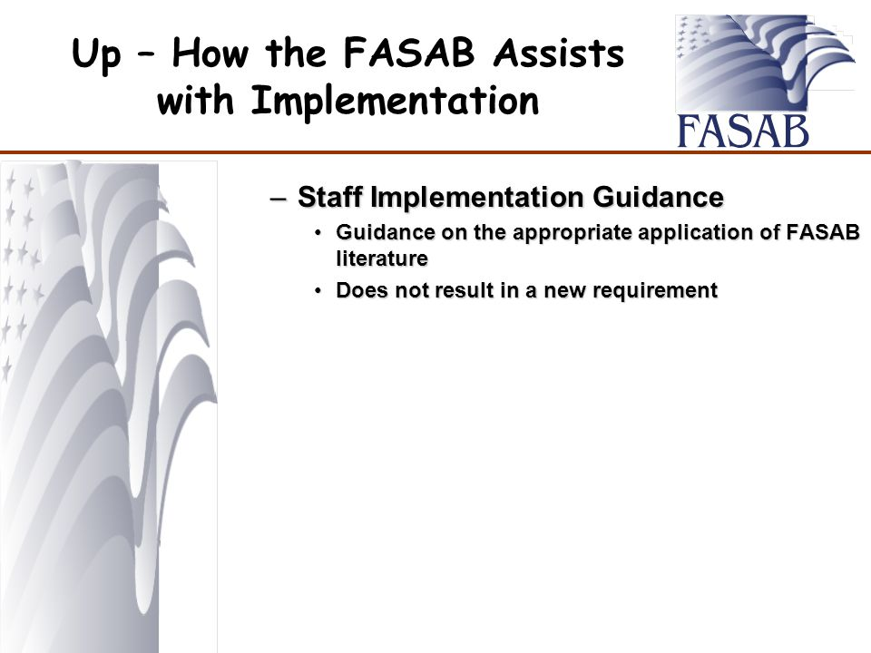Up – How the FASAB Assists with Implementation –Staff Implementation Guidance Guidance on the appropriate application of FASAB literatureGuidance on the appropriate application of FASAB literature Does not result in a new requirementDoes not result in a new requirement
