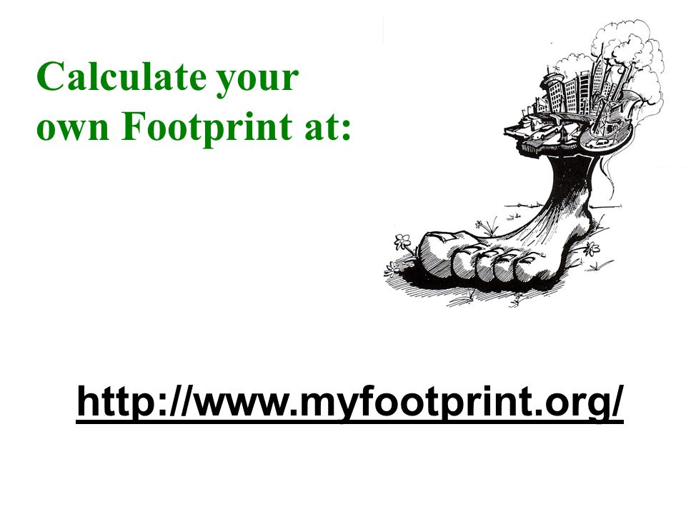 Calculate your own Footprint at: http://www.myfootprint.org/