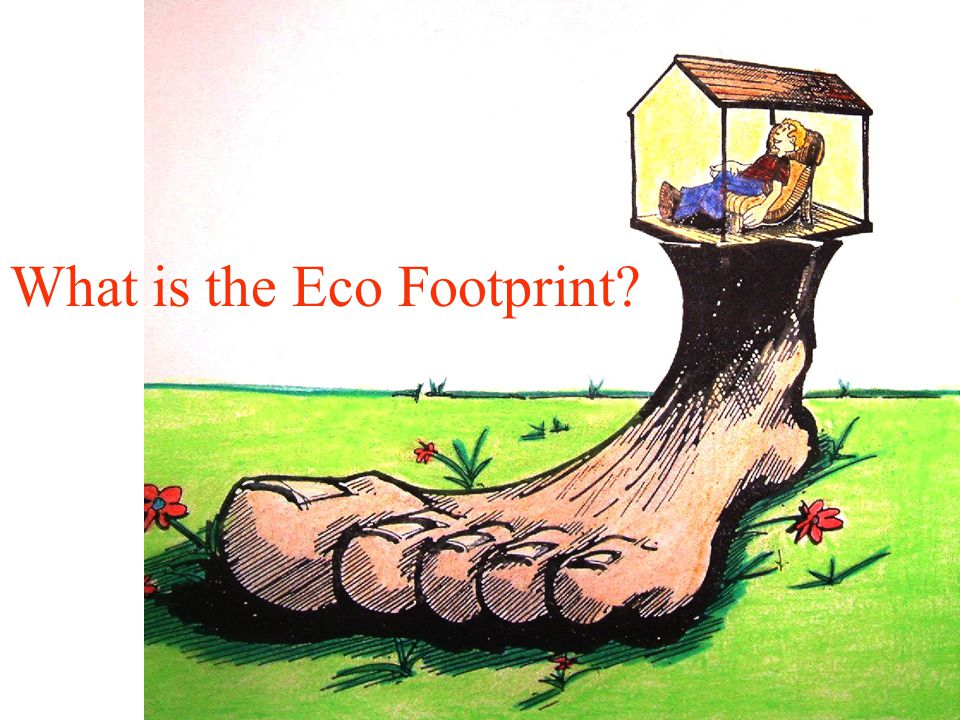 Sitting on footprint What is the Eco Footprint