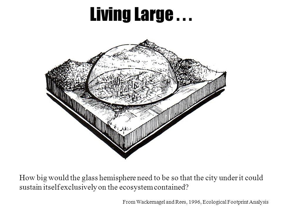 Living Large...