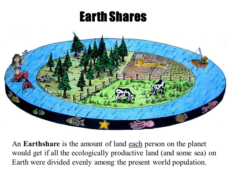 Earth Shares An Earthshare is the amount of land each person on the planet would get if all the ecologically productive land (and some sea) on Earth were divided evenly among the present world population.