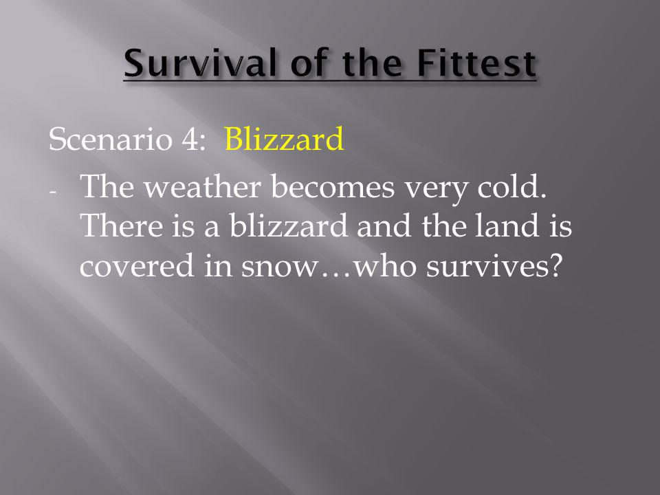 Scenario 4: Blizzard - The weather becomes very cold. There is a blizzard and the land is covered in snow…who survives?