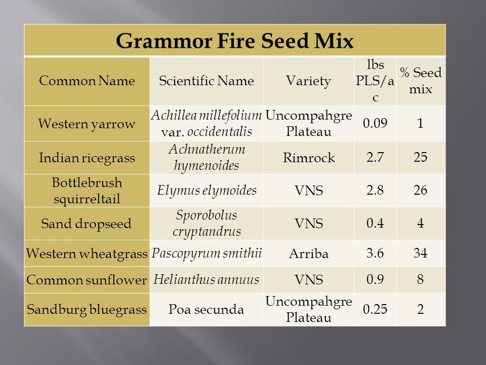 Grammor Fire Seed Mix Common NameScientific NameVariety lbs PLS/a c % Seed mix Western yarrow Achillea millefolium var.