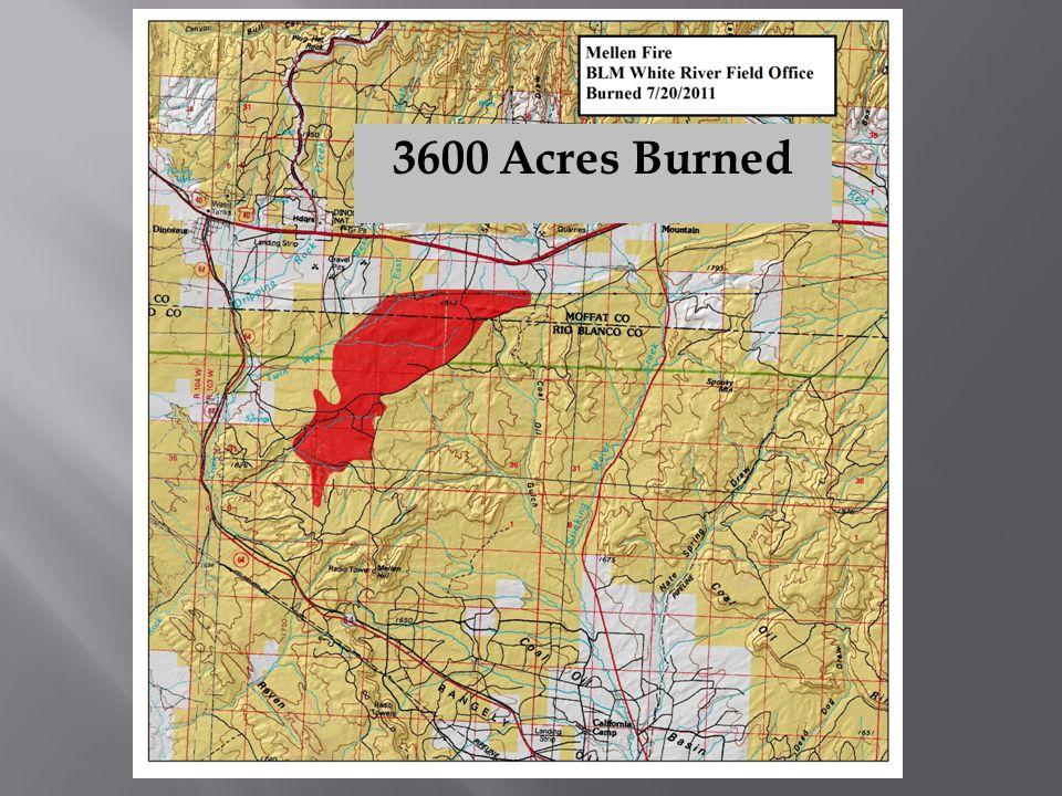 3600 Acres Burned