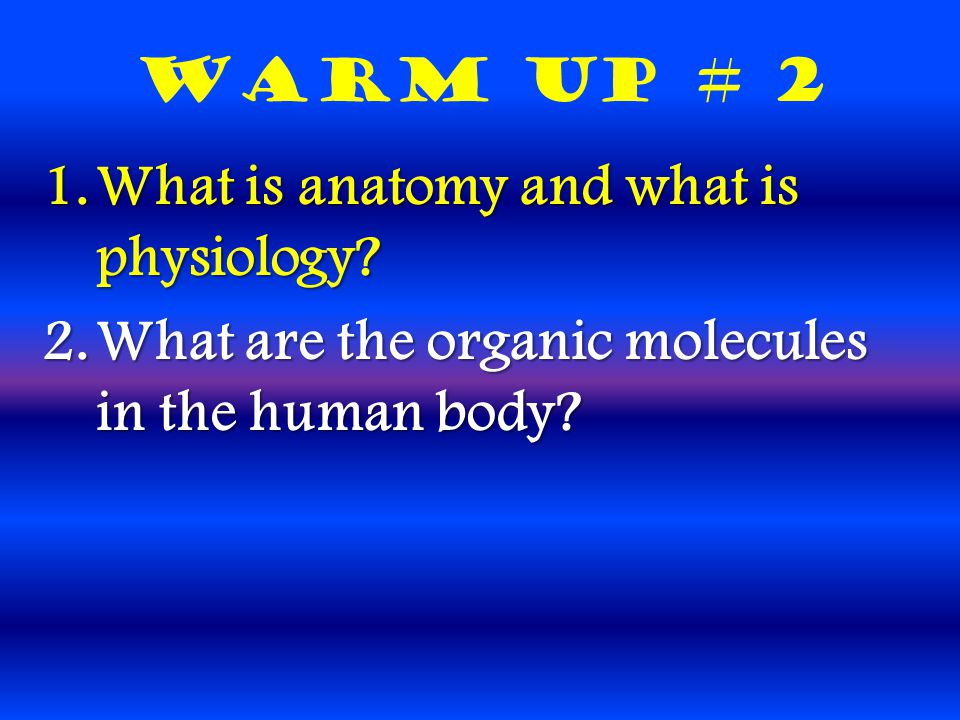 Warm Up # 2 1.What is anatomy and what is physiology.