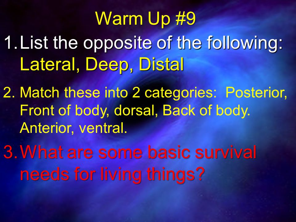 Warm Up #9 1. List the opposite of the following: Lateral, Deep, Distal 2.
