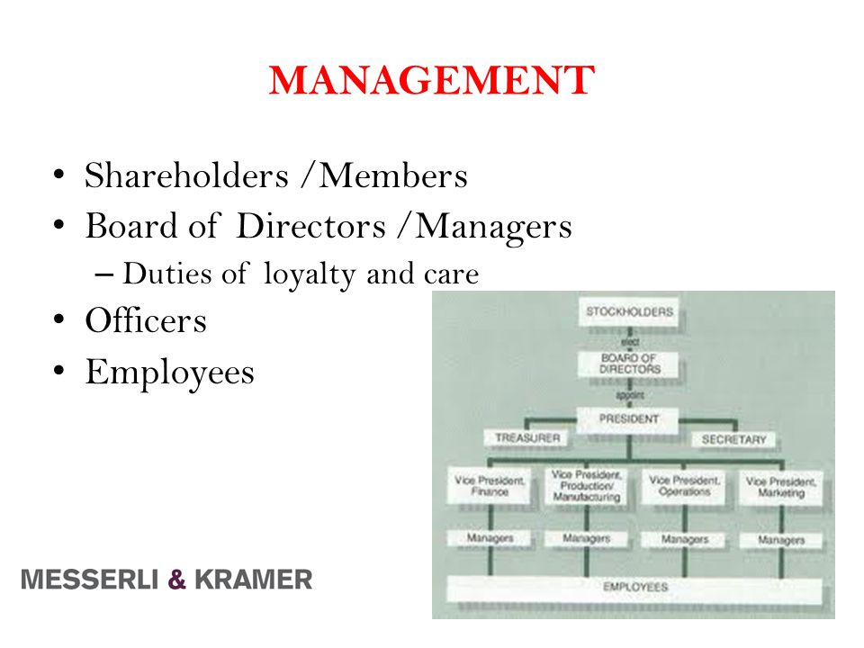 MANAGEMENT Shareholders /Members Board of Directors /Managers – Duties of loyalty and care Officers Employees