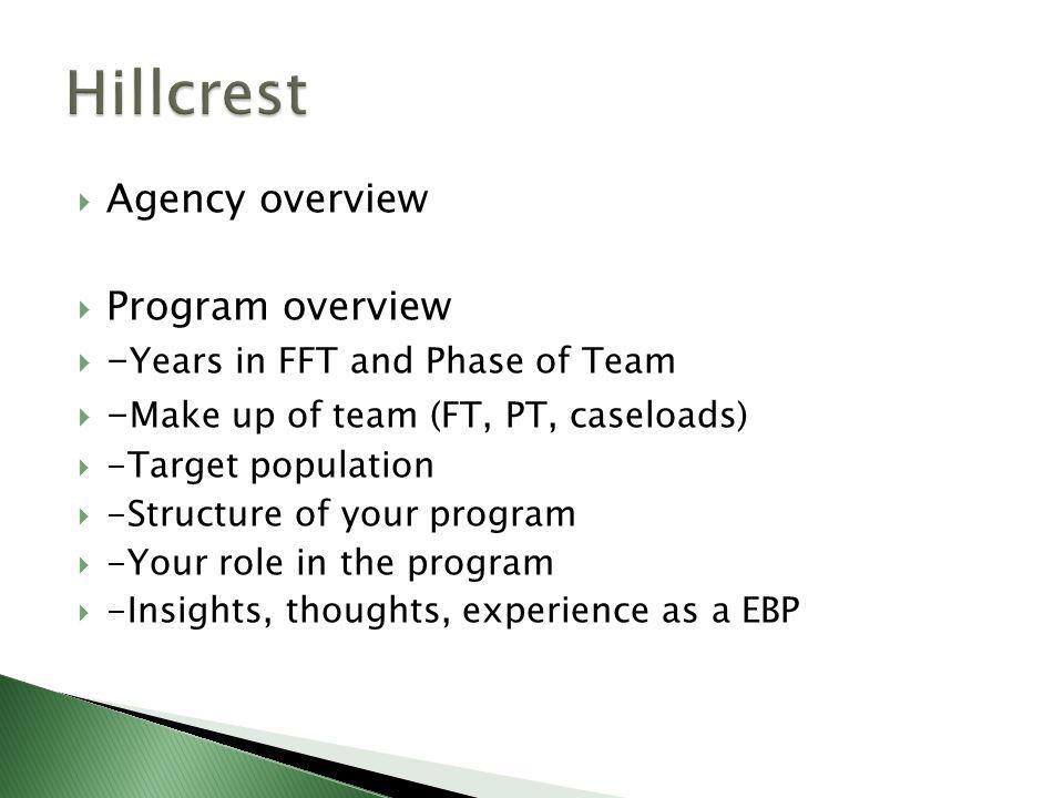  Agency overview  Program overview  - Years in FFT and Phase of Team  - Make up of team (FT, PT, caseloads)  -Target population  -Structure of your program  -Your role in the program  -Insights, thoughts, experience as a EBP