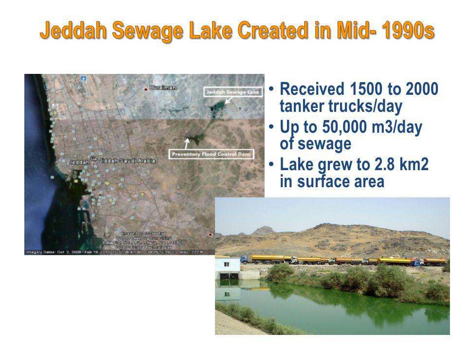 Received 1500 to 2000 tanker trucks/day Up to 50,000 m3/day of sewage Lake grew to 2.8 km2 in surface area