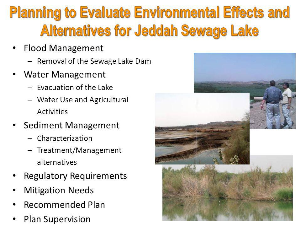 Background Jeddah Sewage Lake – Drivers and project overview – Recommended plan – Clean-up Completion Al-Nazeem Sewage Lake (Riyadh) – Project overview – Sediment management – Clean-up status Project's Benefits 30