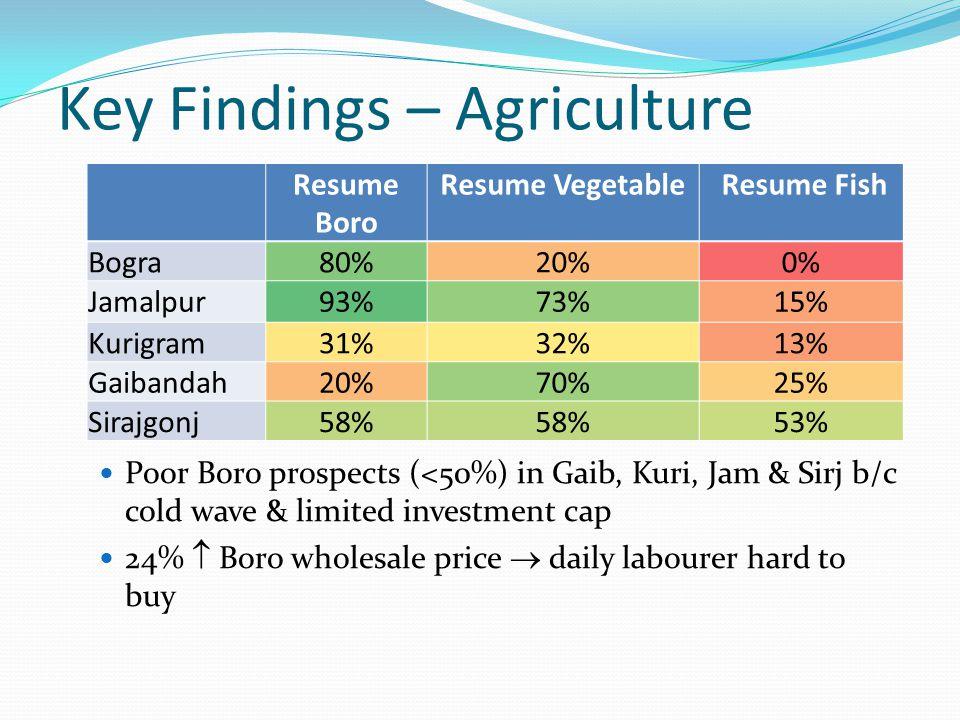 Key Findings – Agriculture Poor Boro prospects (<50%) in Gaib, Kuri, Jam & Sirj b/c cold wave & limited investment cap 24%  Boro wholesale price  daily labourer hard to buy Resume Boro Resume Vegetable Resume Fish Bogra80%20%0% Jamalpur93%73%15% Kurigram31%32%13% Gaibandah20%70%25% Sirajgonj58% 53%