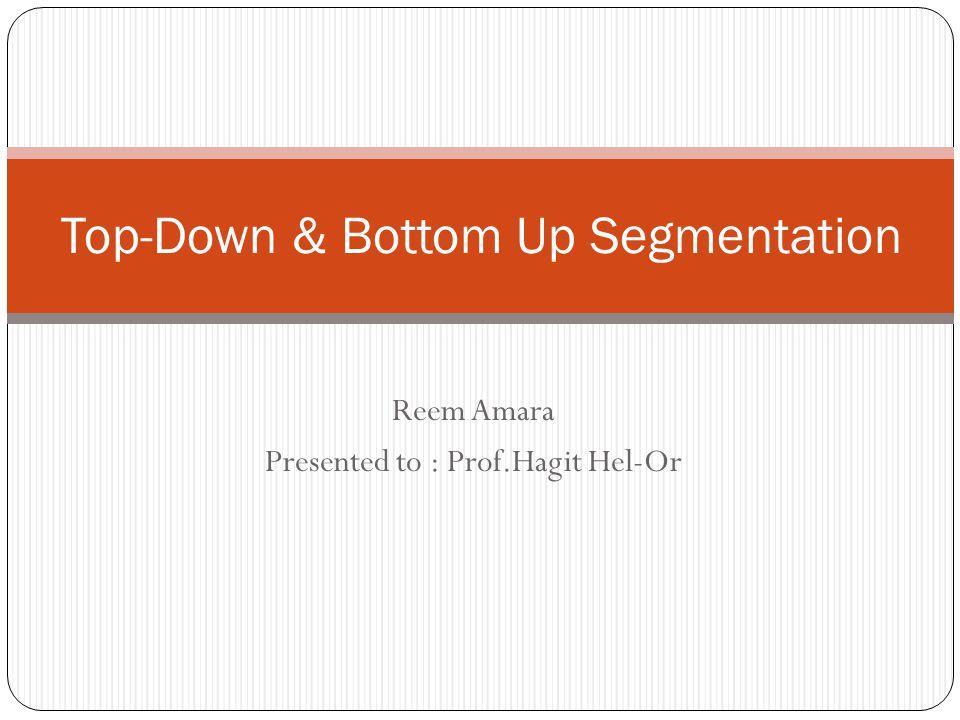 Reem Amara Presented to : Prof.Hagit Hel-Or Top-Down & Bottom Up Segmentation