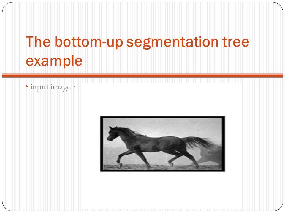 The bottom-up segmentation tree example input image :