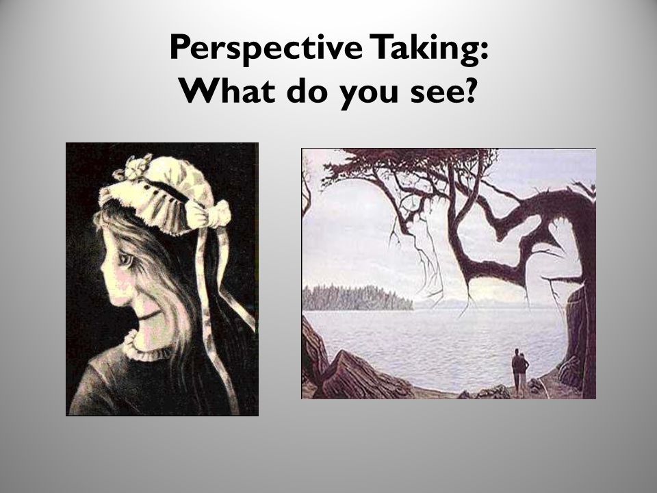 23 Perspective Taking: What do you see