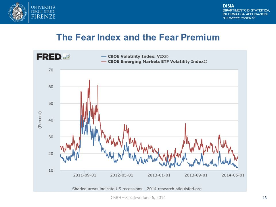 DiSIA DIPARTIMENTO DI STATISTICA, INFORMATICA, APPLICAZIONI GIUSEPPE PARENTI The Fear Index and the Fear Premium CBBH – Sarajevo June 6, 2014 13