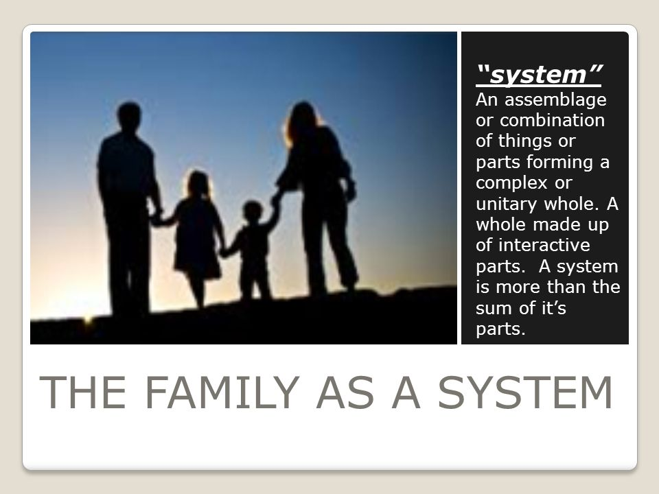 THE FAMILY AS A SYSTEM system An assemblage or combination of things or parts forming a complex or unitary whole.