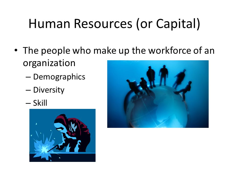 Human Resources (or Capital) The people who make up the workforce of an organization – Demographics – Diversity – Skill